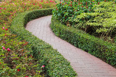 Walkway in the garden Royalty Free Stock Image