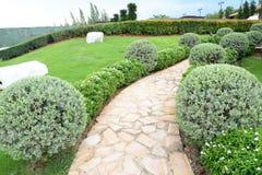 Walkway in garden Stock Image