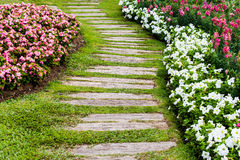 Walkway in garden with grass and flower. Walkway in garden made from old wooden with green grass and flowers stock images