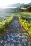 Walkway in garden Royalty Free Stock Photo