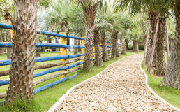 Walkway In Garden.The path in the garden. Stone walkway In Garden.The path in the garden Royalty Free Stock Image