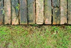 Walkway in garden. The red brick walkway in garden Royalty Free Stock Images