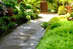 Walkway on the garden with sunlight royalty free stock photo