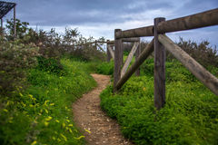 Walkway among the grass on a cliff, along a wooden fence Stock Image