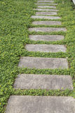 Walkway on green grass background Royalty Free Stock Photography