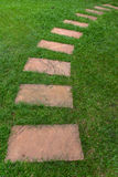 Walkway on the green grass Royalty Free Stock Photos