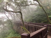 Walkway for hikers in Yangmingshan National Park in Taipei, Taiwan. Asia royalty free stock photography