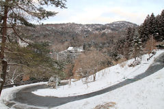 Walkway in Kawaguchiko town Stock Photos