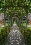 Walkway Lane Path Stock Images