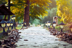Walkway Lane Path With Green Trees and small lanterns Stock Photography