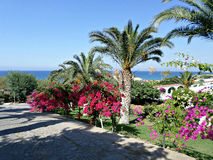 Walkway in Lapta, Cyprus. Beautiful walkway to Denizkizi beach in Lapta, Northern Cyprus. Photo taken on: July 2015 Stock Photo