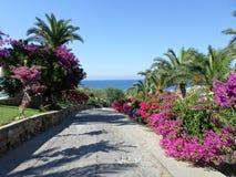 Walkway in Lapta, Northern Cyprus Royalty Free Stock Photos