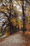 Walkway leading into the autumn park in Tallinn, Estonia Royalty Free Stock Image