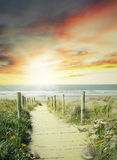 Walkway. Leading to beach scene Royalty Free Stock Image
