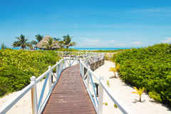 Walkway leading to a tropical beach in Cuba Royalty Free Stock Image