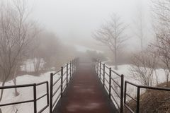 Walkway with Leafless trees and snow on the ground with fog at Mount Usu in winter in Hokkaido, Japan.  royalty free stock photography