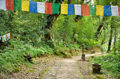 Walkway with Mantra flag at Khachoedpalri lake Royalty Free Stock Photo