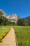 Walkway through meadow in Yosemite. During summer Royalty Free Stock Photo