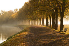 Walkway in mist in autumn. Stock Photos