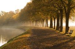Walkway in mist in autumn. stock photos