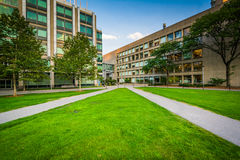 Walkway and modern buildings, at the Massachusetts Institute of Royalty Free Stock Images