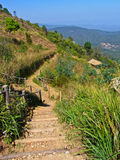 Walkway on Mon Jam hill at Chiang Mai Stock Photo