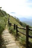 Walkway on the mountain. Tourist walked on the mountain Stock Photos