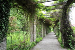 Walkway of Munich Botanical Garden Stock Photography