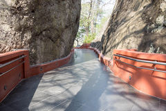 Walkway among nature. Cement walkway among nature background royalty free stock photos