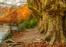 Walkway near river. In Fontaine-de-Vaucluse, France Stock Photos