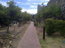 Walkway lined with Trees. A walkway outside the Castle of Good Hope in Cape Town, South Africa royalty free stock images