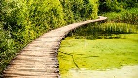 Walkway over beautiful lake Royalty Free Stock Image