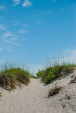 Walkway Over Dunes to the Beach. Heading to the beach means walking over dunes and between sea grasses in many places on the Atlantic Coast stock images