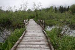 Walkway over marsh land royalty free stock image