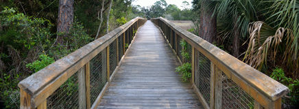 Walkway over marshland in Florida Stock Photos