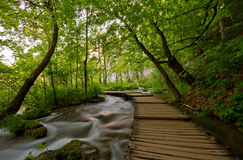 Walkway over streaming water. Royalty Free Stock Photos