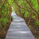 Walkway på Coldwater laken Royaltyfria Bilder