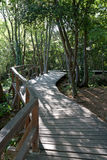 Walkway in Park Stock Images
