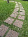 Walkway in the park Brick block placed on the green grass pattern material pavement sidewalk pathway passageway. Walkway in the park Brick block placed on the royalty free stock images