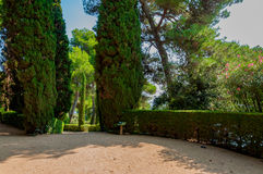 Walkway in the park with bright greenery. Walkway in the mediterranian park with bright greenery Royalty Free Stock Photos