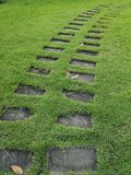 Walkway in the park Cement block placed on the grass pattern material pavement sidewalk pathway passageway. Walkway in the park Cement block placed on the green royalty free stock photos
