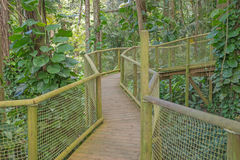 Walkway in the Park of Guadeloupe Stock Photo