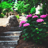 Walkway in the park Royalty Free Stock Photos