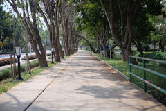 Walkway. In the park with no people royalty free stock photo