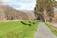 A walkway through a park in Palmerston North New Zealand. With a lone man in bright sunlight royalty free stock photos