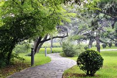 Walkway in the park paved with stone tiles Stock Photo