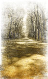 Walkway in the park. Photo in vintage image style. Walkway in the park. Photo in vintage image style Royalty Free Stock Photos