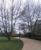 Walkway in a park. A picture of  a path in a park in london,the hyde park,in a day of january Royalty Free Stock Photo