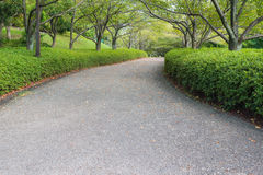 Walkway in the park. On summer stock photography