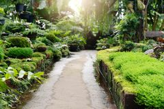 Walkway path in garden freshness in garden stock photos